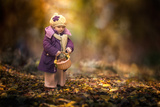 Small Autumn Fairy Photographic Print by Stanislav Hricko