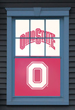 Ohio State University Brutus Buckeye Dual WOWindow Poster Window Decal