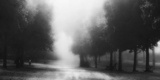 Feel Secure Photographic Print by Fulvio Pellegrini