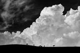 The Calm before the Storm Reproduction photographique par Gloria Salgado
