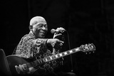 BB King Fotoprint av Alice Lorenzini