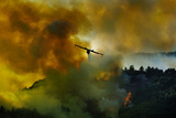 Canadair Aircraft in Action - Fighting for the Salvation of the Forest. Photographic Print by Antonio Grambone
