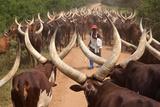 Ugandan Herder Photographic Print by Wolfgang Worndl