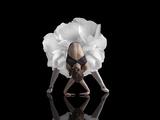 Dansen Fotografisk tryk af Natalia Baras