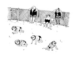 Men in submissive S&M outfits crawl around in a dog run, as women wait out... - New Yorker Cartoon Premium Giclee Print by Edward Steed