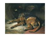 Sleeping Bloodhound Giclee Print by Edwin Henry Landseer