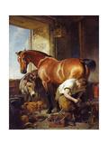 Shoeing Giclée-tryk af Edwin Henry Landseer