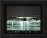 Morning Rise Whale Tail Art Photo Print