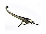 Elasmosaurus Marine Reptile from the Cretaceous Period Poster di Stocktrek Images
