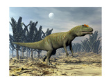Allosaurus Dinosaur Walking Amongst Pachypteris Trees Posters by Stocktrek Images