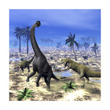 Allosaurus Dinosaurs Attacking a Brachiosaurus in the Desert Premium Giclee Print by Stocktrek Images