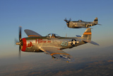 P-47 Thunderbolts Flying over Chino, California Photographic Print by Stocktrek Images