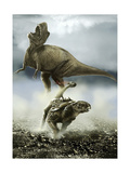 Confrontation Between a Club-Tailed Euoplocephalus and a Young Albertosaurus Posters by Stocktrek Images