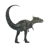 Dracorex Dinosaur from the Cretaceous Period Posters by Stocktrek Images