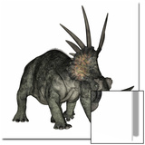 Styracosaurus Dinosaur Prints by Stocktrek Images