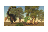 Confrontation Between an Apatosaurus and a Group of Ceratosaurus Prints by Stocktrek Images