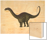 Apatosaurus Dinosaur Wood Print by Stocktrek Images