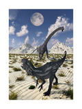 A Carnivorous Allosaurus Confronting a Giant Diplodocus Posters by Stocktrek Images