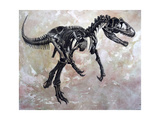 Allosaurus Dinosaur Skeleton Posters by Stocktrek Images