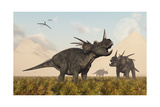 Styracosaurus Dinosaurs Calling Out to Each Other Print by Stocktrek Images