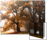 Autumn Stories No. 1 Posters by Heiko Gerlicher