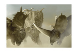 A Group of Pachyrhinosaurus Dinosaurs Art by Stocktrek Images