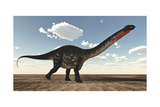 Apatosaurus Dinosaur Walking in the Desert Prints by Stocktrek Images