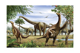 Scelidosaurus, Nothronychus and Argentinosaurus Dinosarus Grazing on Leaves Print by Stocktrek Images
