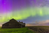 Purple Aurora over an Old Barn in Southern Alberta, Canada Photographic Print by Stocktrek Images