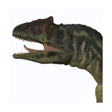 Allosaurus Dinosaur Poster by Stocktrek Images