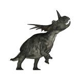 Styracosaurus Dinosaur Roaring Posters by Stocktrek Images