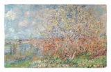Spring, 1880-82 Rug by Claude Monet