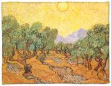 Sun over Olive Grove, 1889 Fleece Blanket by Vincent van Gogh