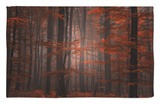 Bosque espiritual Alfombrilla por Philippe Sainte-Laudy