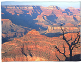 Grand Canyon from South Rim Near Yavapai Point, Grand Canyon National Park, Arizona Fleece Blanket by David Tomlinson