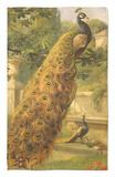 Peacocks in the Park, 1886 Alfombrilla por Olaf August Hermansen
