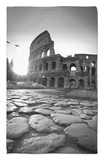 Colosseum and Via Sacra, Rome, Italy Rug by Michele Falzone