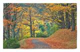 Walking Trail around Bass Lake in the Autumn, Blowing Rock, North Carolina, USA Alfombrilla por Adam Jones