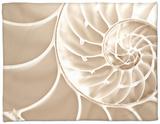 White Swirls Fleece Blanket by Doug Chinnery