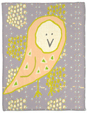Spotted Owl II Fleece Blanket by Amy Lighthall