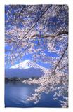 Cerezos en flor y monte Fuji Alfombrilla