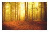 El olor del otoño Alfombrilla por Philippe Sainte-Laudy