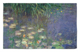 Waterlilies (Les Nympheas), Study of the Morning Water Rug by Claude Monet