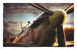 Spitfire Rug by David Bracher