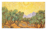 Sun over Olive Grove, 1889 Rug by Vincent van Gogh