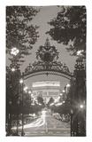 Arco de Triunfo, París, Francia Alfombrilla por Peter Adams