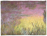 Waterlilies at Sunset, 1915-26 Fleece Blanket by Claude Monet