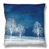 New World Throw Pillow by Philippe Sainte-Laudy