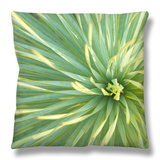 Motion Blur of Yucca Plant at Jc Raulston Arboretum in Raleigh, North Carolina Throw Pillow by Melissa Southern