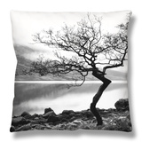 Solitary Tree on the Shore of Loch Etive, Highlands, Scotland, UK Throw Pillow by Nadia Isakova
